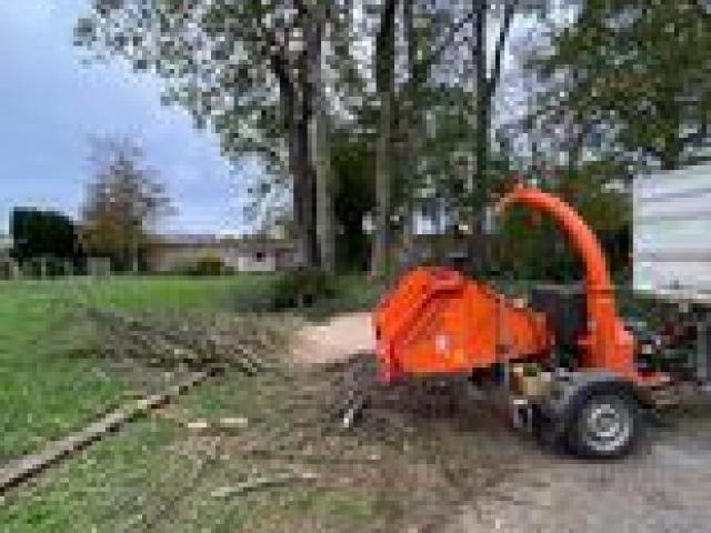 Travaux de demontage pour un arbre mort cause maladie situe a douvres la delivrande
